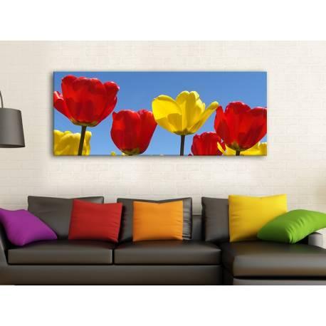 Tulips in yellow & red - piros és sárga tulipánok - no. 100164