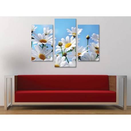 Három részes vászonkép - Beautyful Daisies - margaréta vászonkép 3a-100423