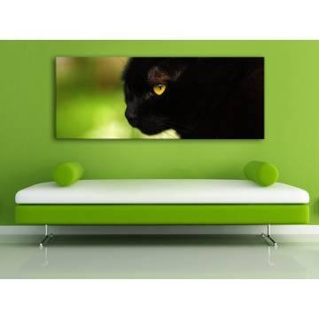 The black cat legend - fekete macska vászonkép 100189