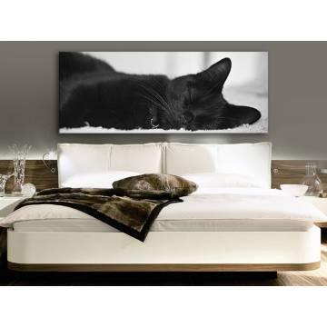 Sleeping B&W - fekete macska vászonkép 100190