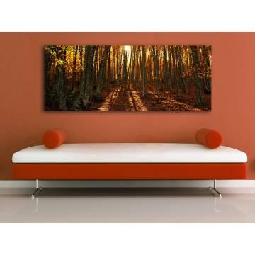 Autumn forest sunset - napnyugta az õszi erdõben - vászonkép - 100192