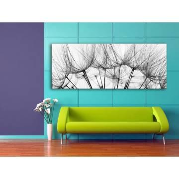 Makro dandelion - pitypang vászonkép - 100197
