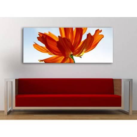 Red petals in the sun - vörös szirmok a fényben - vászonkép 100211