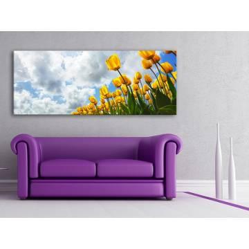Look at the sky - tulipán vászonkép 100223