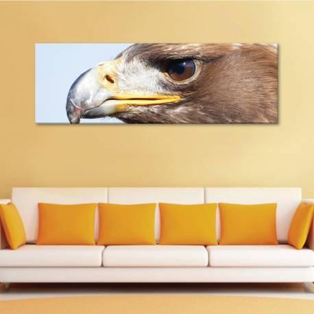 Eagle closer - vászonkép