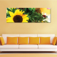 Sunflower compilation - napraforgó - vászonkép