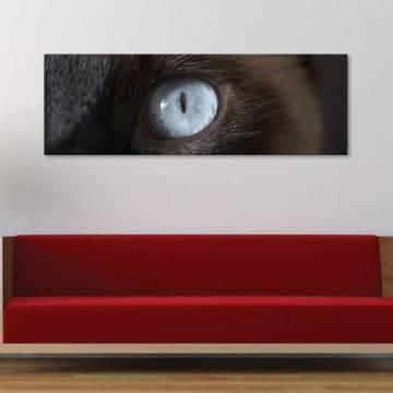 Cateye macskaszem - vászonkép