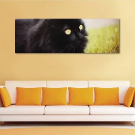 Black cat - fekete macska - vászonkép