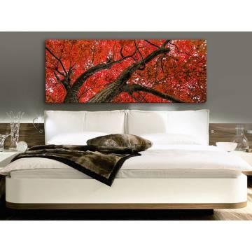 Red leaf tree - vörös levelek vászonkép 100236