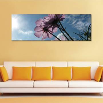 Flowers in bleu sky - virágok - vászonkép