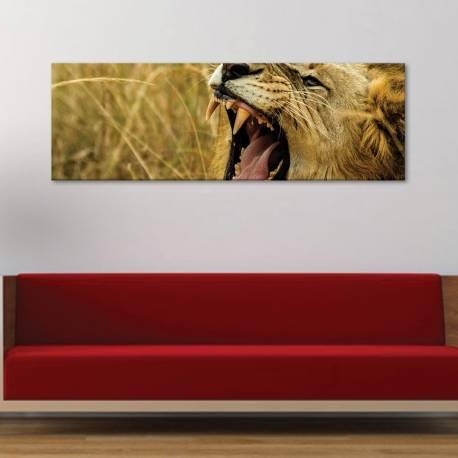 Simba - oroszlán vászonkép