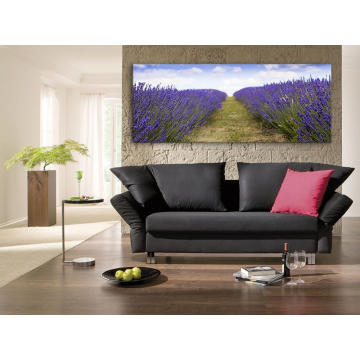 Lavender field - levendula mezõ vászonkép 100243
