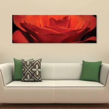 Open petals - vörös szirmok vászonkép