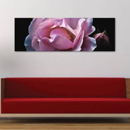 Pink Rose - bájos rózsa vászonkép