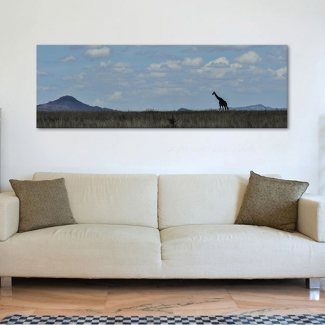 Alone giraffe - magányos zsiráf vászonkép