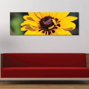 Happy flower - sárga napraforgó vászonkép