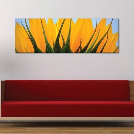 Part of sunflower - napraforgó szelet vászonkép