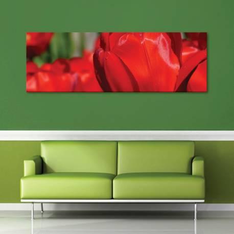 Red tulips - Vörös tulipánok vászonkép