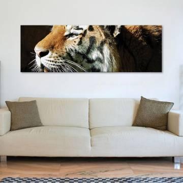 Powerful tigger - erõteljes tigris vászonkép
