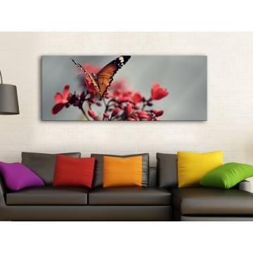 Butterfly - pillangó vászonkép 100274