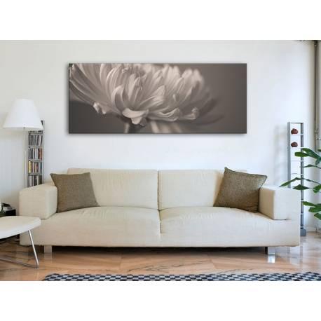 Flower petal grayed - virágszirom fekete fehér vászonkép 100305