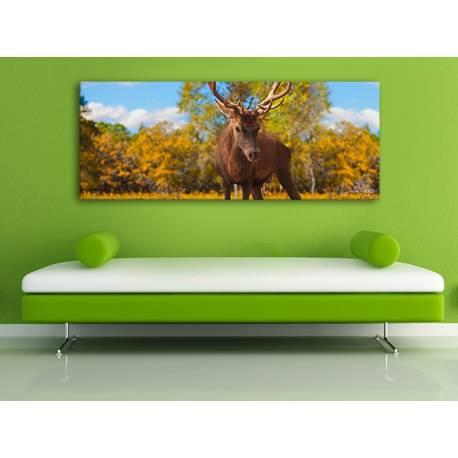 The Deer - szarvas vászonkép 100325