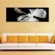 White hibiscus - fehér hibiscus - vászonkép