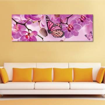 Butterfly likes orchid II - pillangó és orchidea - vászonkép