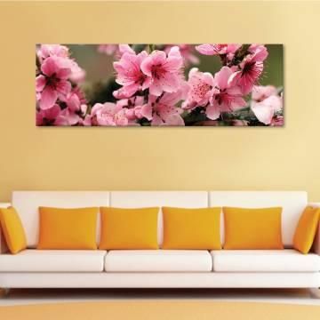 Pink dreams - rózsaszín álmok - vászonkép