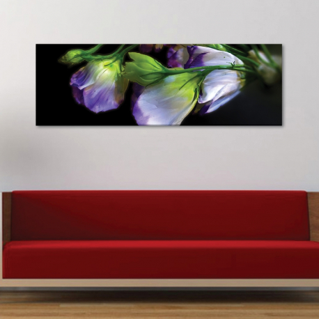 Wild flowers - vadvirágok - vászonkép