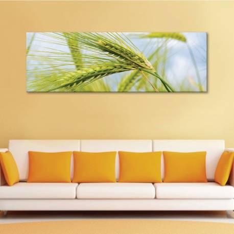 Wheatear - búzakalász - vászonkép