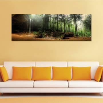 Wake forest - Ébredõ erdõ - vászonkép