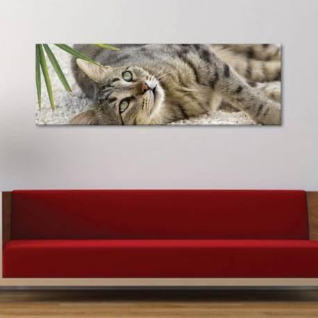 Kitty - kis macska - vászonkép