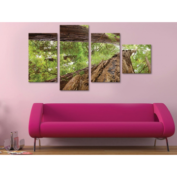 Forest giants - erdei óriás fák - 4 részes vászonkép