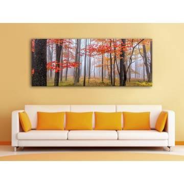 Colorful autumn trees - Színes őszi fák - Vászonkép - 100449
