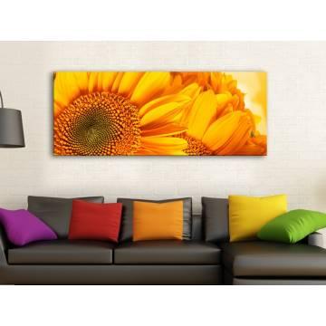Yellow Sunflower Petals - Sárga Napraforgó Szirmok - vászonkép 100462