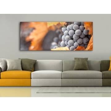 Red Grape - Szőlőfürt - vászonkép 100463