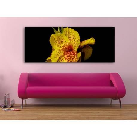 Canna Yellow - Sárga Virág - Vászonkép 100493