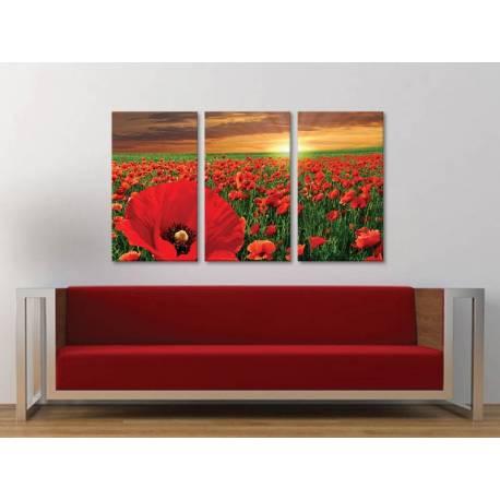 Három részes vászonkép - Poppy meadow - Pipacsmezõ - vakrámára feszített vászonkép no. 3a-100152