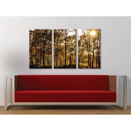 Három részes vászonkép - Forest lights - erdei fények 3a-100227