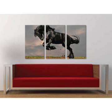 Három részes vászonkép - The balck horse - fekete ló vakrámára feszített vászonkép 3a-100238