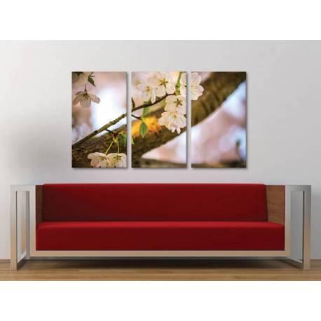 Három részes vászonkép - Sherry blossom - a cseresznye virágzása vászonkép 3a-100244