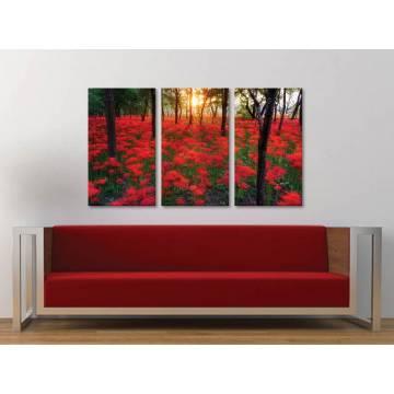 Három részes vászonkép - Forest flowers - erdei virágok vászonkép 3a-100256