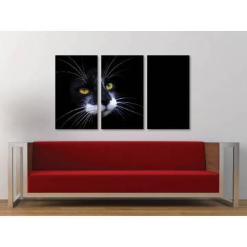 Három részes vászonkép - I'm watching you - figyellek - fekete macska vászonkép 3a-100262