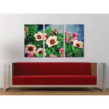Három részes vászonkép - Flower beauty - a virág szépsége vászonkép 3a-100268