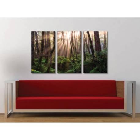 Három részes vászonkép - Forest sunshine - erdei fények vászonkép 3a-100282