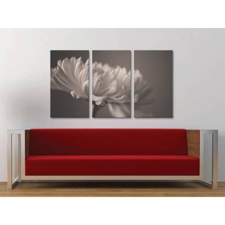 Három részes vászonkép - Flower petal grayed - virágszirom fekete fehér vászonkép 3a-100305