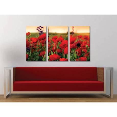 Három részes vászonkép - Red meadow of poppies - pipacs mezõ 3a-100322