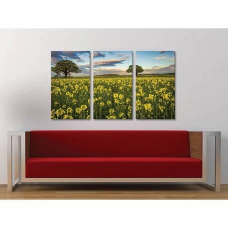 Három részes vászonkép - Colza fields - repce mezõk vászonkép 3a-100331