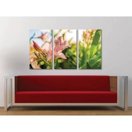 Három részes vászonkép - Bloom - virágzás vászonkép 3a-100398